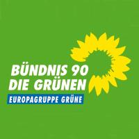 europagruppe gruene